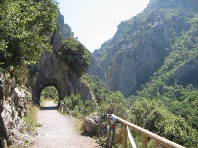 Ruta guiada bici por Vía Verde de la Senda del Oso