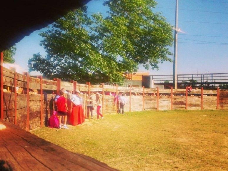 Private bullring arena