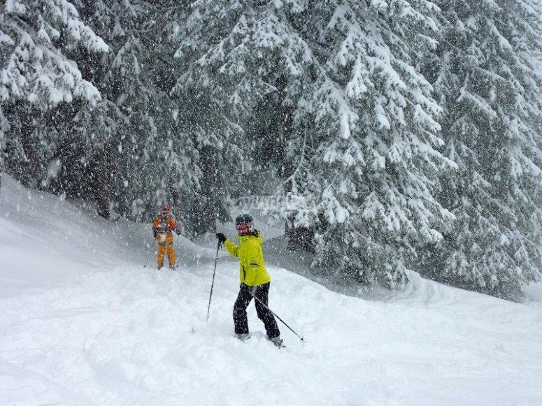 Experiencia de esqui de fondo