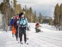 Grupo practicando el esqui de travesia