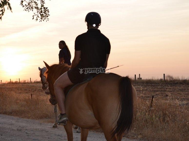 室外用餐骑马在日落野餐野餐