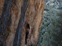 mujer escalando con arboles de fondo