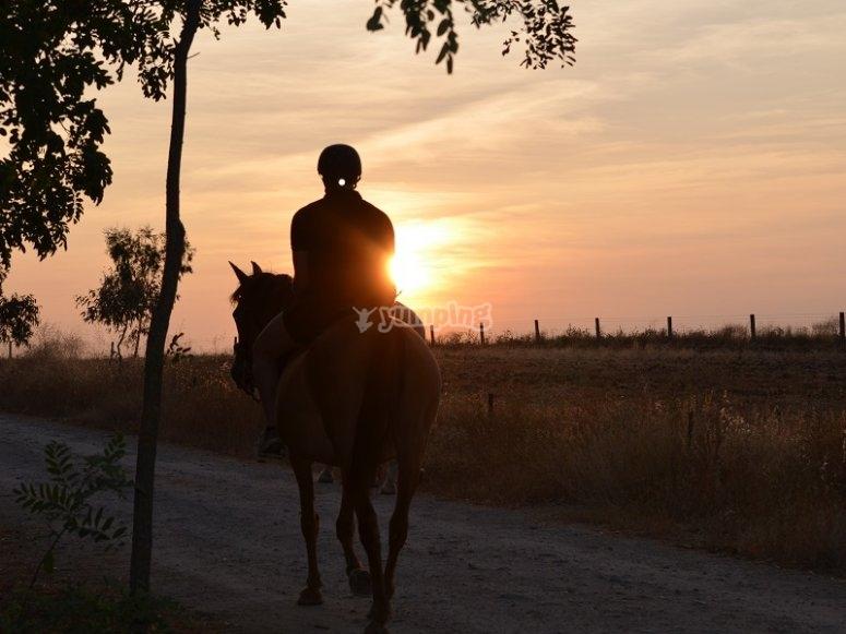 Cabalgando con la puesta de sol