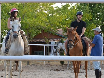 Team building y coaching con caballos en Talavera