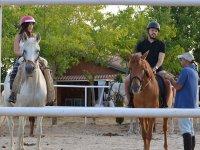 Team building y coaching con caballos en Talavera