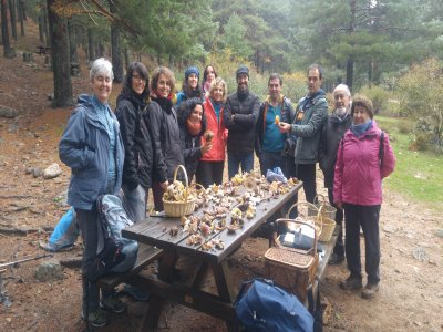 Mycology expedition in Becerril de la Sierra