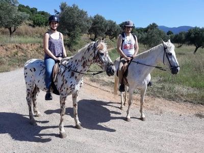 Paseo a caballo VIP en Montseny y comida en masía