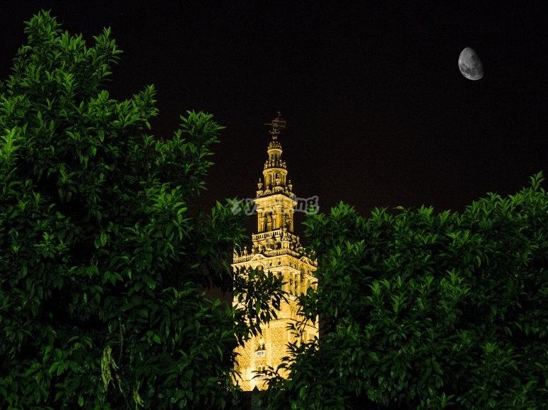Giralda at night