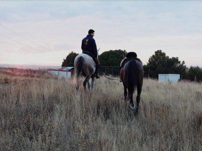 Equitazione a Roales del Pan 2 ore
