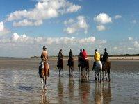 场骑马在海边