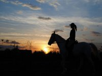woman riding a horse on a sunset