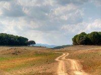 标志自然景观与山的背景