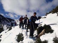 通过加泰罗尼亚比利牛斯山出口雪鞋行走