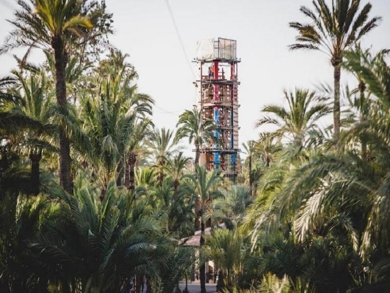 Rocodromo entre palmeras