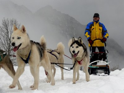 Dog Sledding Route in Partacua Valley, 1h