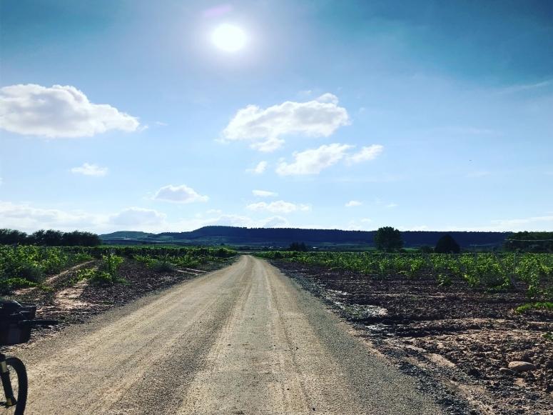 Camino hasta la Bodega