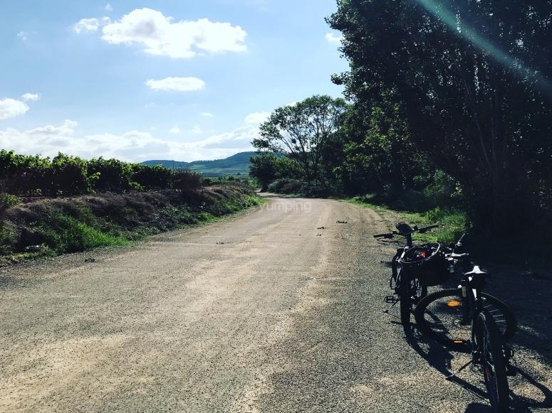 Caminos perfectos para disfrutar mientras pedaleas