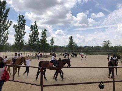 Bono 8在La Pedriza骑马课程
