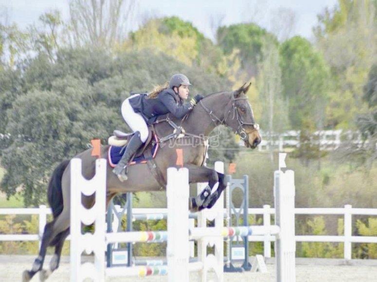 Aprende a saltar con el caballo