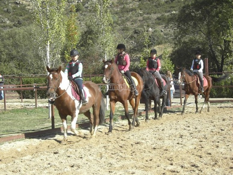 Campamento de Navidad con caballos
