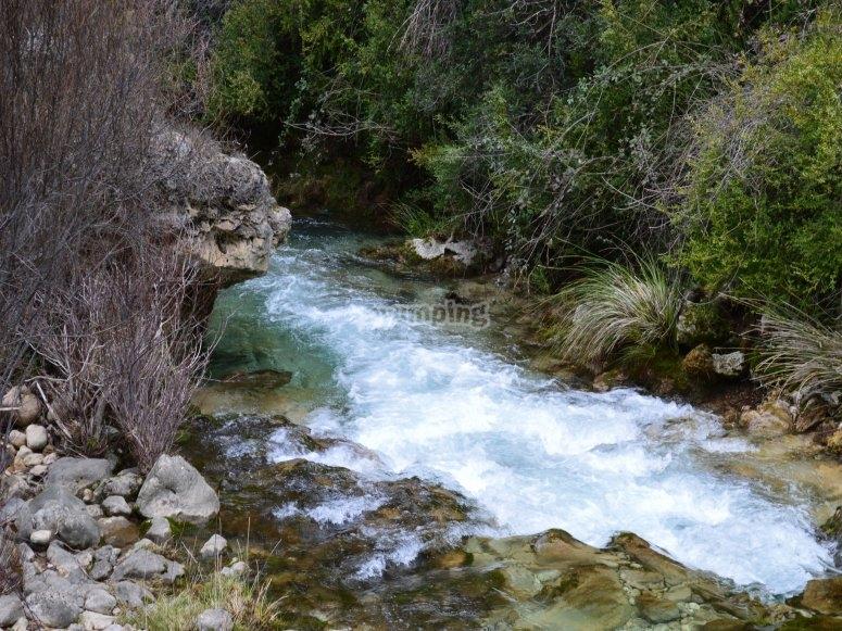 Rio Sierra Cazorla