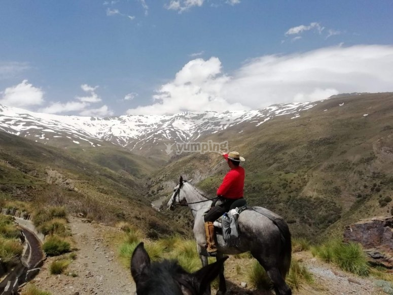 Ruta a caballo entre nieve