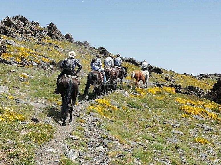 Cabalgando por la alpujarra de Granada