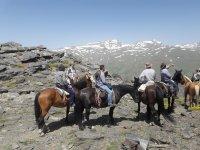 Desde los caballos mirando Sierra Nevada