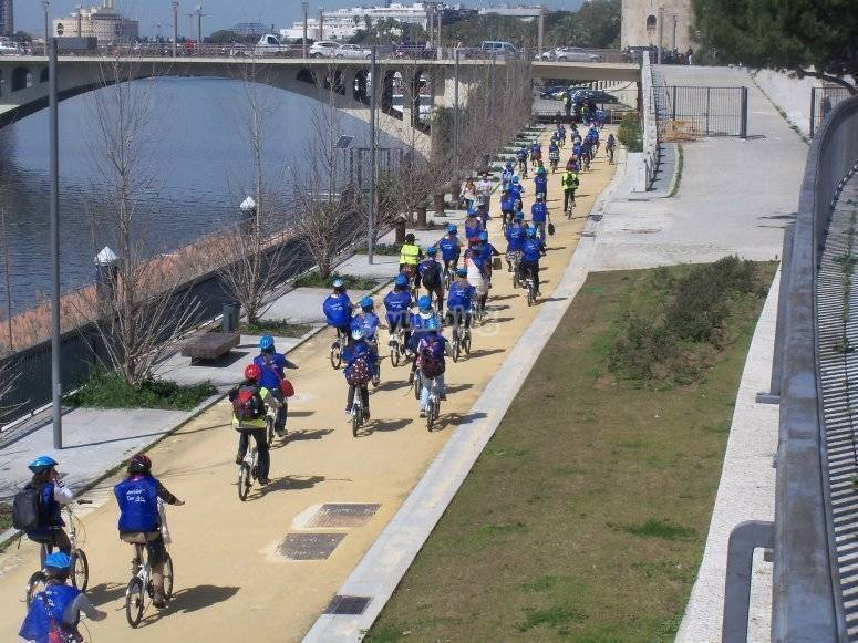 A orillas del Guadalquivir con la bici