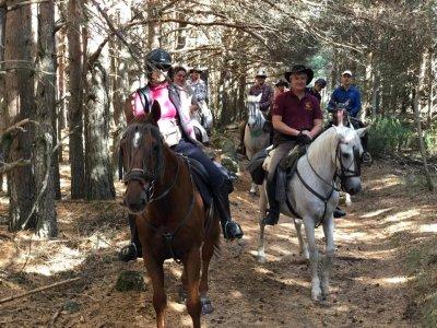 Excursión a caballo en Piedralaves 2 horas