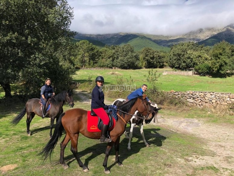 Ruta ecuestre en Piedralaves