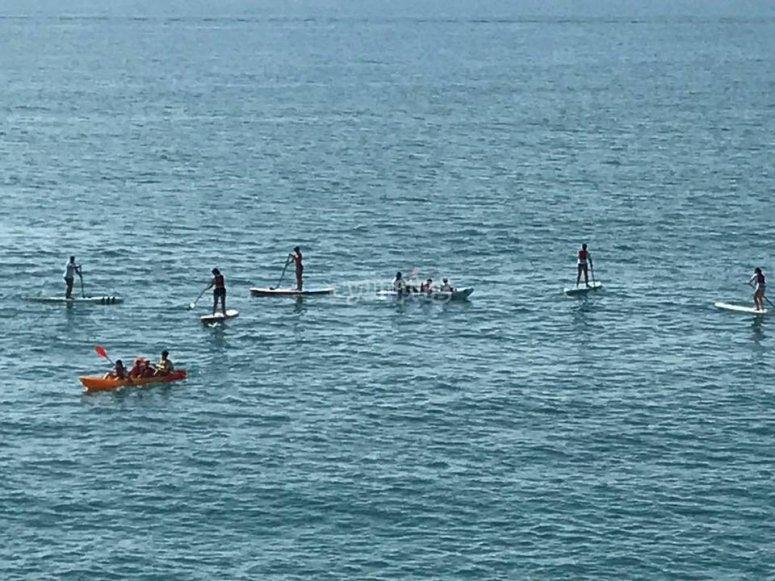 Practicando paddle surf en grupo