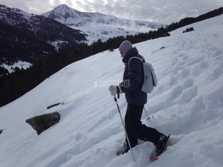 Senderos de nieve virgen