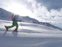 滑雪道在Baqueira