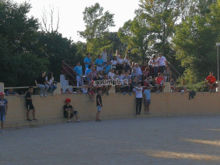 Grada plaza de toros