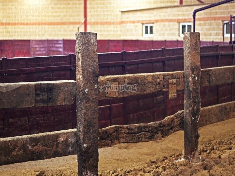 Plaza de toros interior