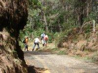 四个人穿越一条路