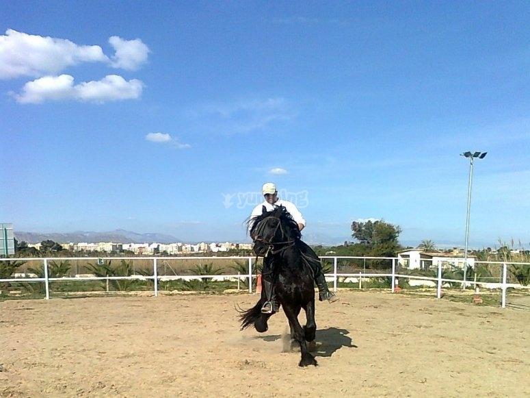 Jinete en la pista exterior de equitación