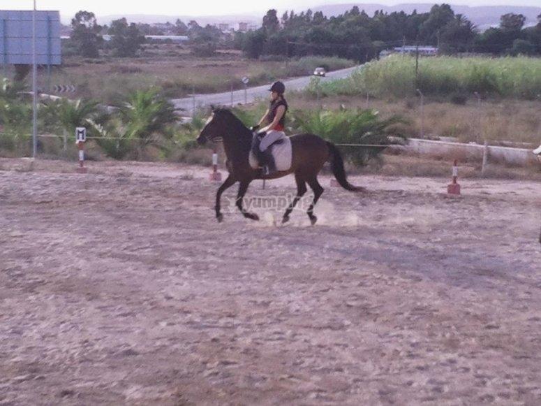 Mejorando técnicas de equitacion