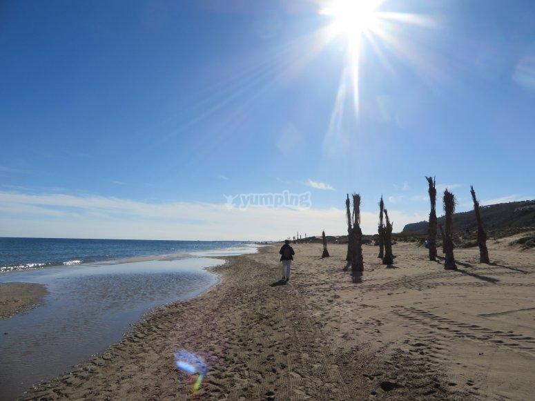 Playa el Altet