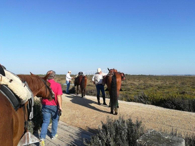 Ruta para jinetes en Jerez