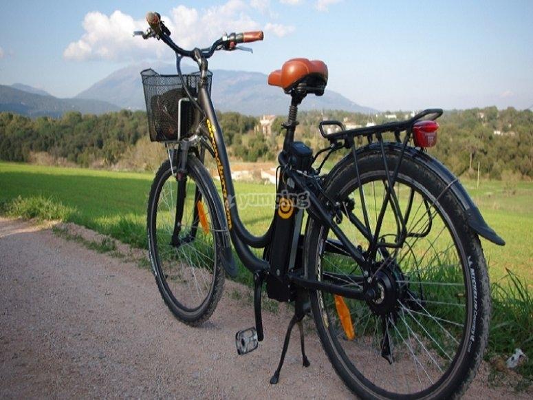 Bicicleta electrica de paseo