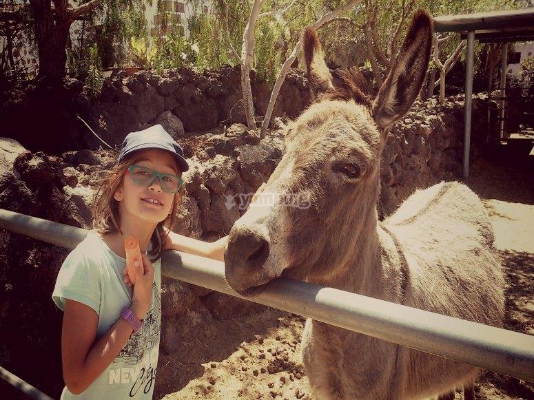 Nina conociendo a nuestros animales