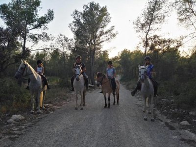 1h horse riding tour groups Bosque de la Marquesa
