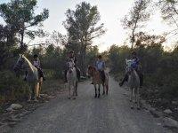 Ruta a caballo grupos Bosque de la Marquesa 1 hora