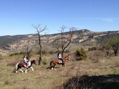 Paseo a caballo especial parejas por Morella 90min