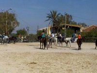 Horseback riding tour couples in Cartagena