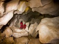 En la galería de la cueva