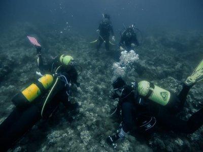 Sesión de buceo de iniciación en Mataró