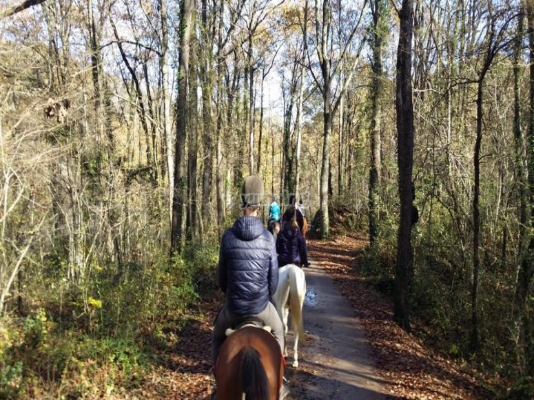 Montado en caballo recorriendo senderos